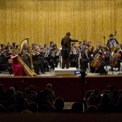 Концерт с камерным оркестром